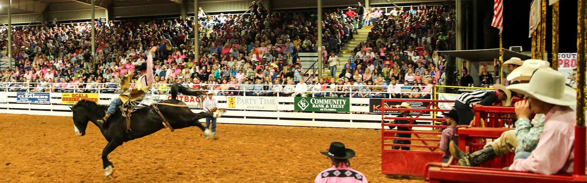 Venue Information Ocala Southeastern Pro Rodeo
